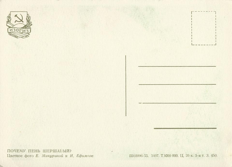 scherschawi_1955bg_960